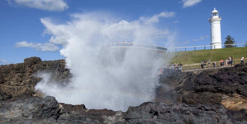 Image result for kiama blowhole